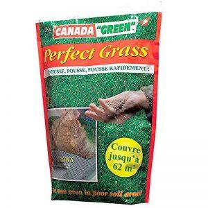 Canada Green 08108 Perfect Grass Gazon de Jardin Vert 1 kg de la marque Canada Green image 0 produit