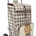 Chariot de courses pliable avec poche isotherme et poche porte parapluie - Double utilisation - Capacité 43L - Marque Bo Time de la marque Bo Time image 1 produit