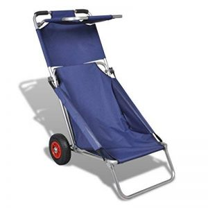 chariot de plage pliable TOP 6 image 0 produit