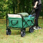 chariot transport plage TOP 7 image 1 produit