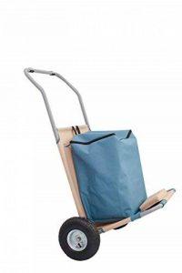 chariot transport plage TOP 8 image 0 produit