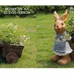 Design lapin nain BL7184 avec brouette XL 44 cm de haut déco jardin gnome figurines décoration design de la marque GMMH image 1 produit