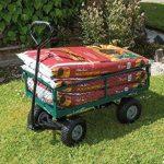 Draper Chariot de jardin acier grillagé vert de la marque Draper image 1 produit