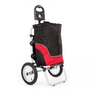 Duramaxx Carry Grey Remorque pour vélo • Chariot Charge max. 20kg • Avec sac de transport amovible • Utilisable aussi comme chariot • Tubes métalliques et sac en plastique • Les pneus à air assurent un transport confortable • Noir & rouge de la marque Dur image 0 produit