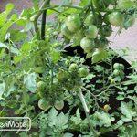 GardenMate® 5x Sacs Jardinière à plantes en tissu non tissé 30L - BLACKLINE de la marque GardenMate® image 2 produit