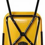 Haemmerlin - HAEMMERLIN - Brouette Flexi UP 100L peinte roue gonflée de la marque Haemmerlin image 1 produit