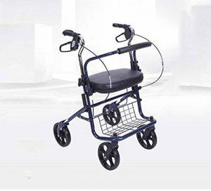 Harvest EU/Panier d'achat pour personnes âgées Chariot pour personnes âgées Chariot élévateur à roulettes Les personnes âgées peuvent être pliées de la marque Trolley/Harvest EU image 0 produit