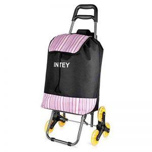 INTEY Poussette de Marché escalier, chariot de course 6 roues, un siège pliable intégré, 38L. de la marque INTEY-FR image 0 produit