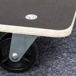Meister 822020 Chariot à roulettes - plaque Sérigraphie - roues en PA - 590 x 490 mm - 400 kg de la marque Meister image 2 produit