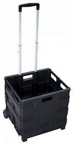Pavo Chariot De Transport Avec Caisse Pliante Plastique Capacité 35 Kg de la marque Pavo image 0 produit