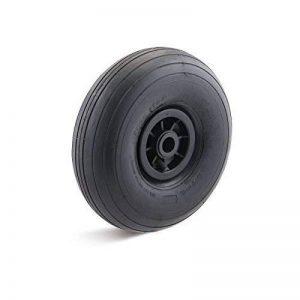 Roue à air 300mm avec Plastique Jante Wiimote Paliers lisses Charge utile 200kg de la marque Torwegge image 0 produit