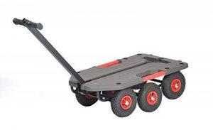 TAP 0003731 Chariot tout terrain, 990 mm x 640 mm x 350 mm, charge admissible 250 kg de la marque TAP image 0 produit