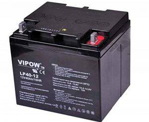 VIPOW 40Ah 12 V Batterie AGM à décharge profonde Gel d'entretien-UPS pour chariot de Golf de la marque VIPOW image 0 produit