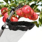 Waldbeck Big Apple • Chariot Élévateur Télescopique • Cisaillement • Aluminium • Diamètre du filet: env. 20 cm (Ø) • Filet tubulaire • Dimensions de la tige téléscopique :1,35-3m • Poids: environ 1,2 kg • Sans échelle de la marque Waldbeck image 1 produit